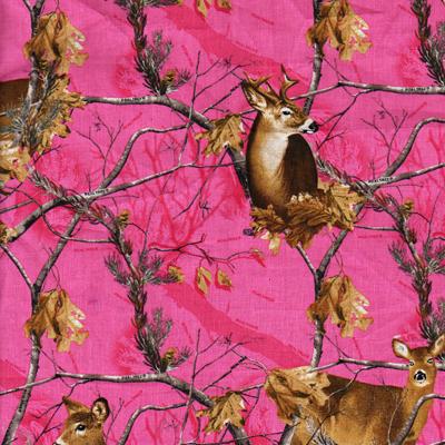 Real Deer on Pink